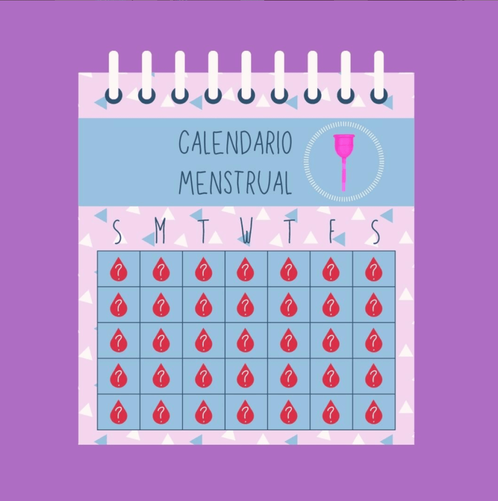 ciclo menstrual calendario menstrual